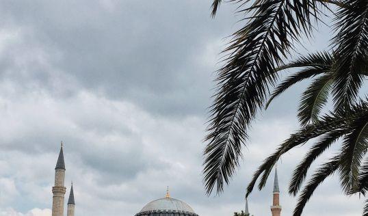 Истанбул - феерия от лалета